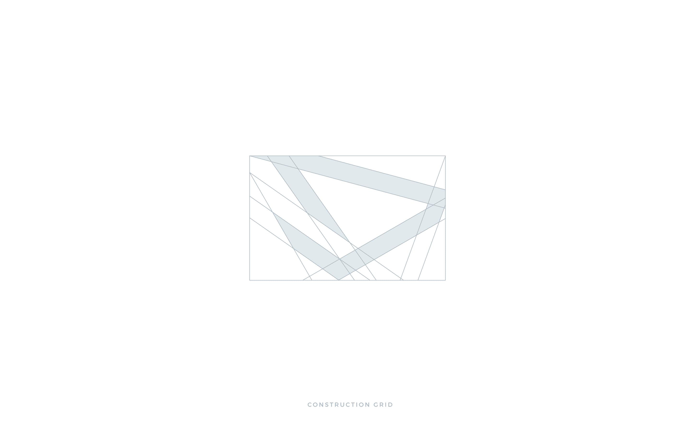 DLION griglia costruzione pittogramma logo